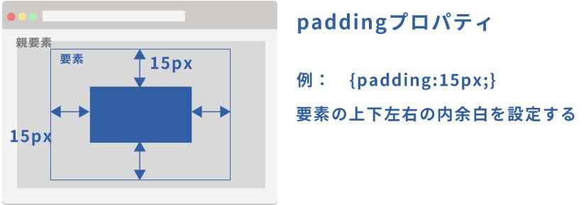 paddingの役割